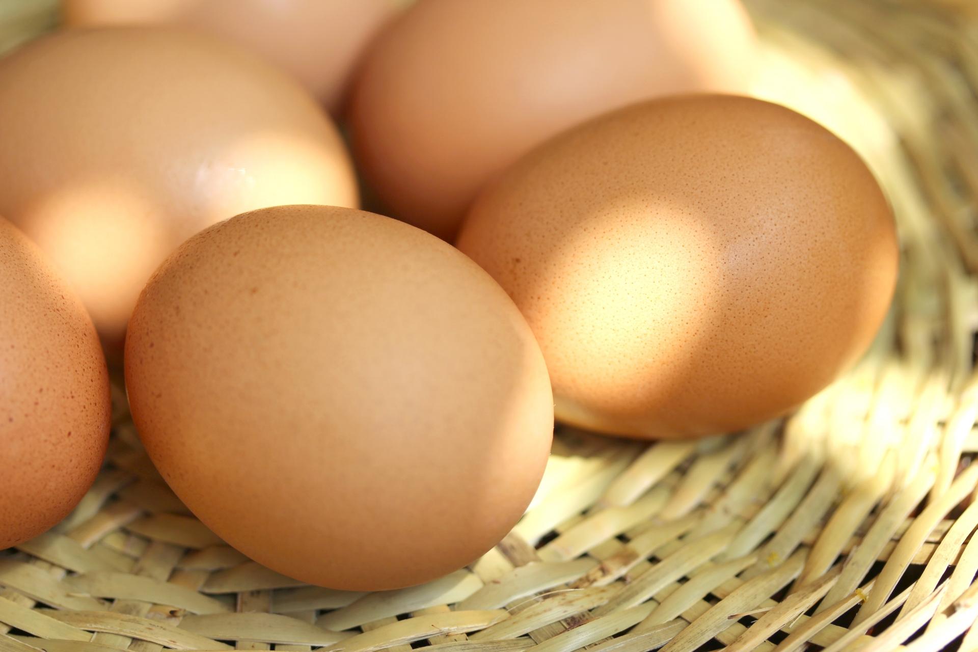 【特別な卵】VEGGI de PANで使っている卵の事知ってください。